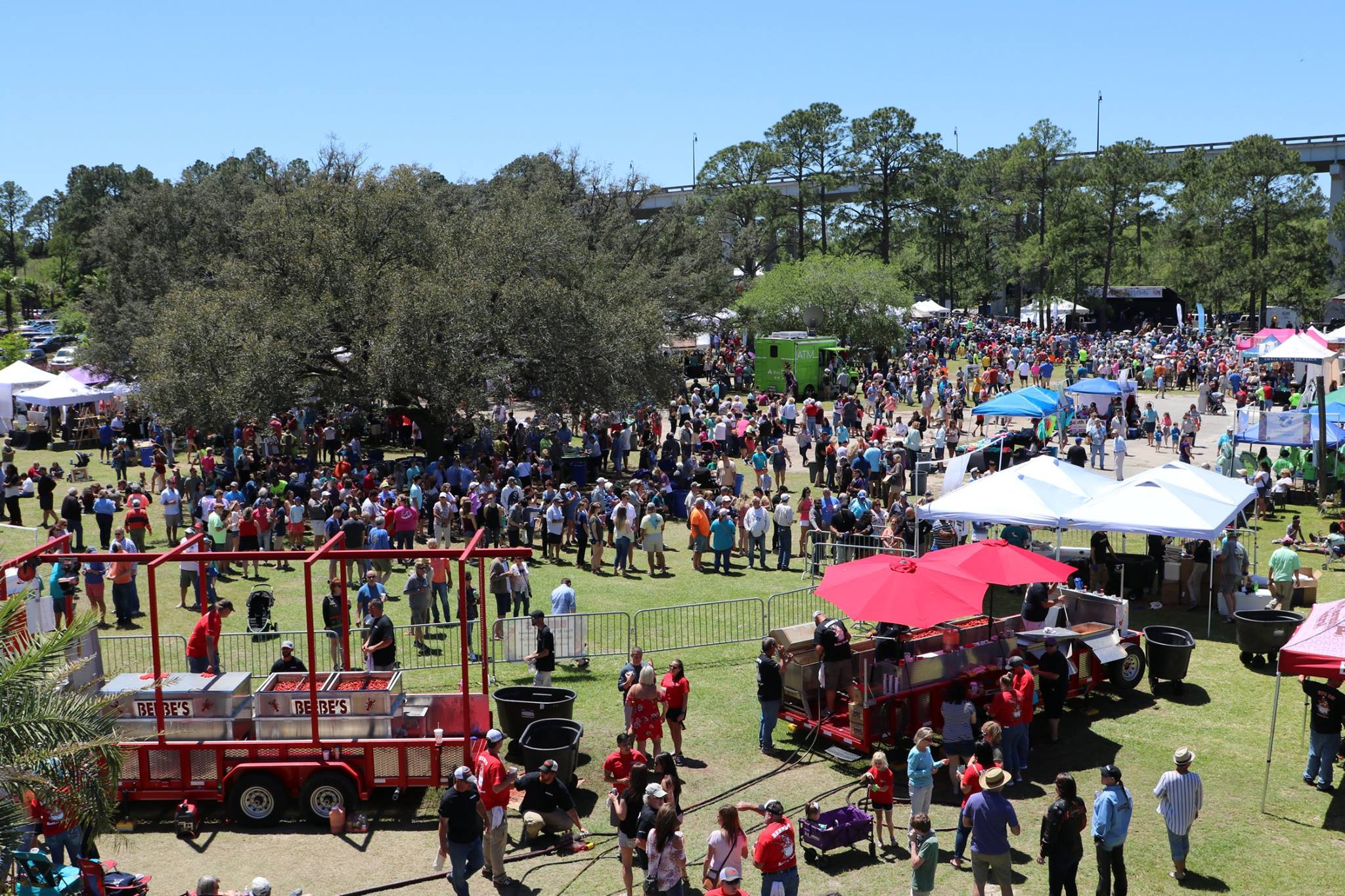 photo of the crowd listening to zydeco music
