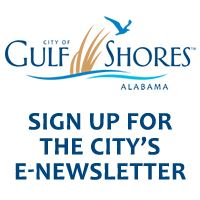Newsflash Button for Website - City logo and e-Newsletter